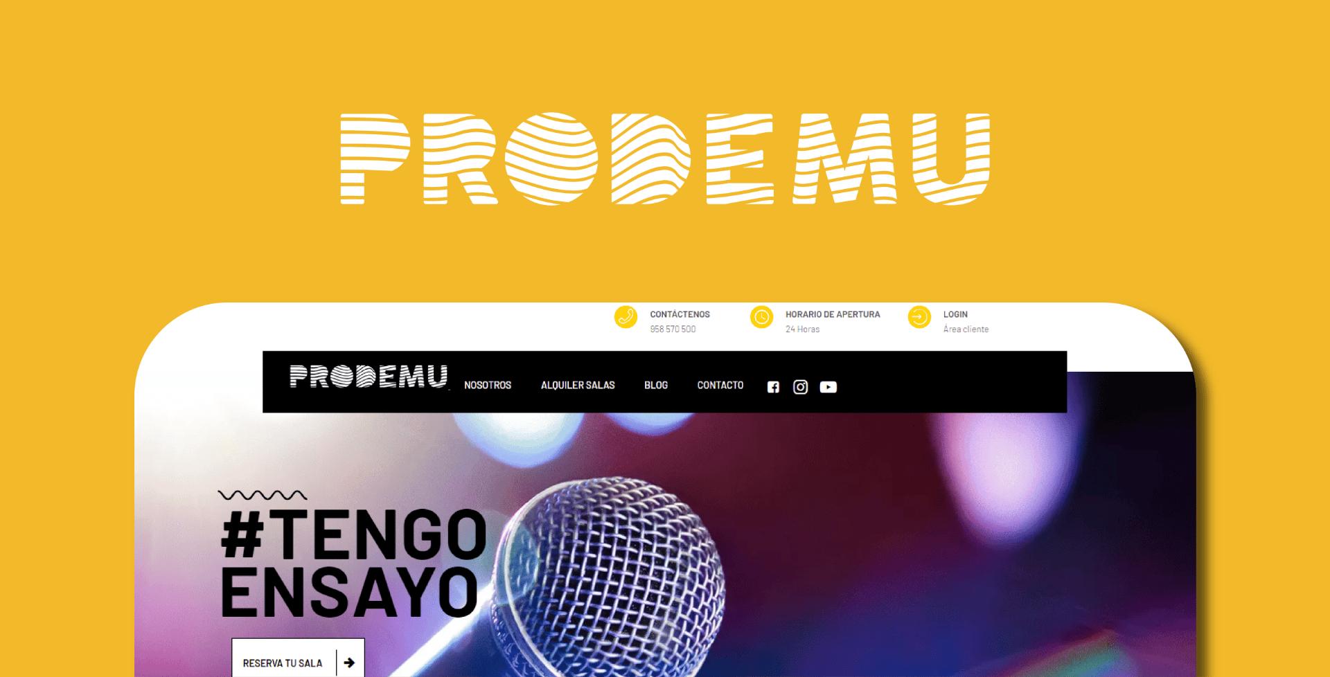 Diseño Web: Prodemu