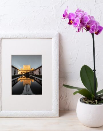 Diseño Tienda Online: Atrezo Floristas